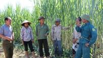 Khi già làng, trưởng bản tham gia xóa nghèo