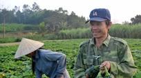 Những cây trồng cho thu nhập tiền tỷ ở Giang Sơn Đông