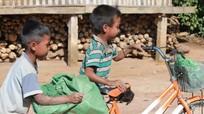 24,6% trẻ em Việt Nam bị thấp còi