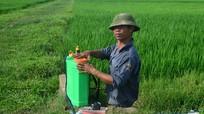 Ẩn họa thuốc trừ sâu vì sự chủ quan của nông dân
