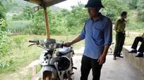 Nghệ An: Cán bộ bảo vệ rừng bị truy đuổi trong đêm