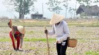 Kiểm tra chất lượng các công trình thuộc nguồn vốn 135 ở Quỳ Châu