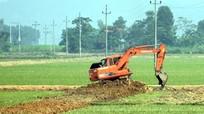 Nghệ An: Đề xuất chuyển mục đích sử dụng 242 ha đất trồng lúa, đất rừng