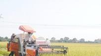 Chuyển đổi đất lúa, đất rừng: Tất cả vì mục tiêu phát triển