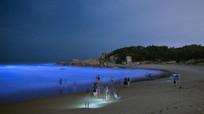 Bãi biển phát sáng màu xanh dương ở Trung Quốc