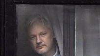 Ecuador cảnh báo kết thúc quy chế tị nạn với ông chủ Wikileaks
