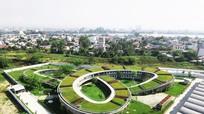 Vườn rau khổng lồ trên nóc công trình Việt từng đoạt giải quốc tế