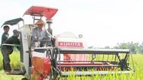 Bổ sung cơ chế thu hút đầu tư vào nông nghiệp