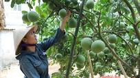 Học Đại học Nông nghiệp để làm trang trại