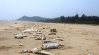 Thảm họa môi trường biển: Chỉ một người nhận hình thức kỷ luật