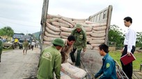 Viettel Nghệ An tặng 205 tấn xi măng cho hộ nghèo Anh Sơn