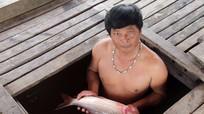 UBND huyện Tương Dương giải thích nguyên nhân cá chết hàng loạt ở Cửa Rào