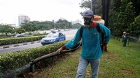 Singapore ban bố tình trạng lây lan virus Zika lên mức nguy hiểm