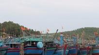 Ngư dân kêu trời vì thiếu nơi neo đậu tàu thuyền