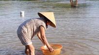 Thu tiền triệu nhờ lòng sông Lam cạn nước