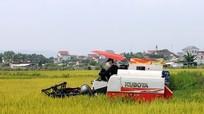 Xã thu tiền máy gặt lúa ở Yên Thành: Có hay không việc 'bảo kê' ?