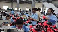 Nghệ An: Thu thuế bảo vệ môi trường đạt gần 500 tỷ đồng