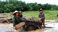 Người dân đổ xô vớt củi lụt trên sông Lam