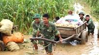 Bộ đội giúp dân thu hoạch ngô trong nước lũ