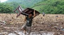 Đổ xô về đập thủy điện vớt gỗ sau lũ