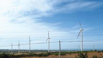 Hàng loạt dự án điện gió miền Trung… bay theo gió