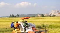 Dư luận về việc 'thu phí' máy gặt ở huyện Yên Thành
