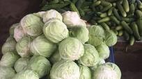 Sau mưa lũ rau xanh tăng giá