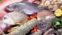 Hải sản miền Trung: Những loại nào nên và chưa nên ăn?