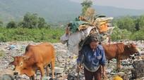 Những người sống nhờ rác
