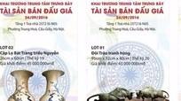 Việt Nam sắp có trung tâm đấu giá tác phẩm nghệ thuật đầu tiên