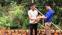Chàng trai 9X thu tiền tỷ từ chăn nuôi gà, lợn 'sạch'