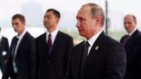 6% dân Mỹ muốn bầu Putin làm Tổng thống Hoa Kỳ