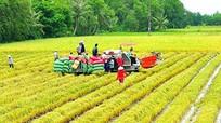 Nông nghiệp Việt Nam phải sớm bỏ cách làm cũ trong thời đại mới