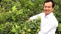Những nông dân thu nhập tiền tỷ ở Anh Sơn