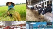 Chuyển đổi nông nghiệp thành công là động lực tăng trưởng của Việt Nam