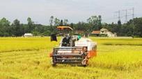 Cân nhắc vận động sức dân hợp lý trong xây dựng nông thôn mới