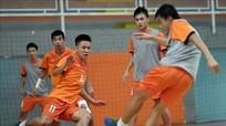 Tin cực vui với ĐT Futsal Việt Nam