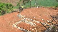 Tăng cường giám sát tình trạng sử dụng đất không đúng mục đích