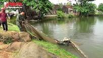 Thu lãi hàng trăm triệu đồng từ nuôi ương cá giống