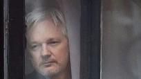 Wikileaks hủy đợt công bố thông tin nhạy cảm về nước Mỹ