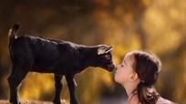 Bộ ảnh yêu động vật mẹ chụp con gái quá ngọt ngào
