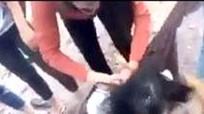 Clip nữ sinh đánh bạn dã man gây phẫn nộ