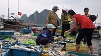 3.000 tỷ đồng đền bù cho ngư dân miền Trung đã về đến địa phương