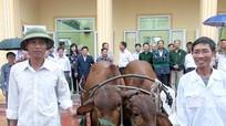 Hội CCB thành phố Vinh tặng 6 con bê cho giáo dân nghèo