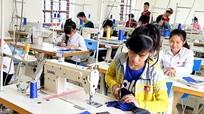Nghệ An: Đã có 2/12 đơn vị sáp nhập Trung tâm dạy nghề và Trung tâm GDTX