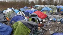 Anh sẽ nhận hơn 300 trẻ tị nạn từ Pháp