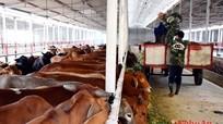 Tháo nút thắt đầu tư cho nông nghiệp