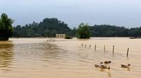 Mưa lũ làm 8.225 hộ dân ở Nghệ An bị ngập