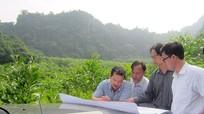 Nghệ An: Rà soát thu hồi 2.778 ha đất lâm trường giao cho hộ dân sản xuất