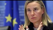 Niềm hy vọng hiếm hoi của châu Âu